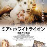 3年以上かけてCGなしで撮影された奇跡の友情の物語!―『ミアとホワイトライオン 奇跡の1300日』来年2月公開決定