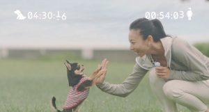 『ペット』xHonda (2)