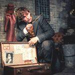 エディ・レッドメイン「ダンブルドア先生を連れて行きます!」―『ファンタスティック・ビーストと黒い魔法使いの誕生』豪華キャスト来日決定