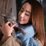 ロシアンブルーの猫・良男役を演じた吉沢亮がダンスを披露!―史上最強にキュンとくる猫映画『猫は抱くもの』予告編解禁