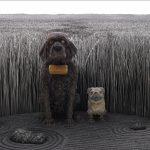 ウェス・アンダーソン監督らしさが炸裂する風変わりな犬たち!―『犬ヶ島』本編映像解禁