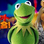 シリーズ史上初!台本なしでマペットたちが大暴れ―Disney+『マペット大集合!』8月21日配信開始
