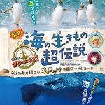 水瀬いのり&さかなクンが参加!最新技術が解き明かす新たな海の世界!―『驚き!海の生きもの超伝説 劇場版ダーウィンが来た!』6月公開決定