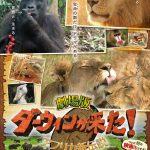 葵わかなによるナレーションで3つの家族の物語と迫力ある映像の一部を公開―『劇場版 ダーウィンが来た! アフリカ新伝説』〈予告編&ポスター〉解禁