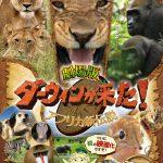NHKの人気自然番組が待望の初映画化!―『劇場版 ダーウィンが来た!アフリカ新伝説』公開決定