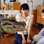 榮倉奈々がワニに喰われてる・・・―『家に帰ると妻が必ず死んだふりをしています。』本編映像解禁