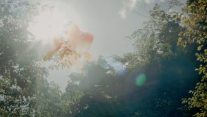 短編④ 『ガラスの園で月を食らう』 (C)2015 相馬寿樹/「ガラスの園で月を食らう」製作委員会