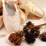"""「バレエボーイズ」公開記念で""""麗しきバレエの世界""""衣装展開催"""