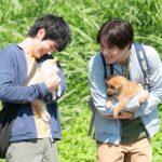 上海国際映画祭に出品決定!―『犬部!』〈場面写真〉解禁